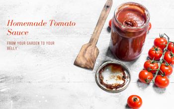 Homemade Tomato Sauce~fresh from the garden